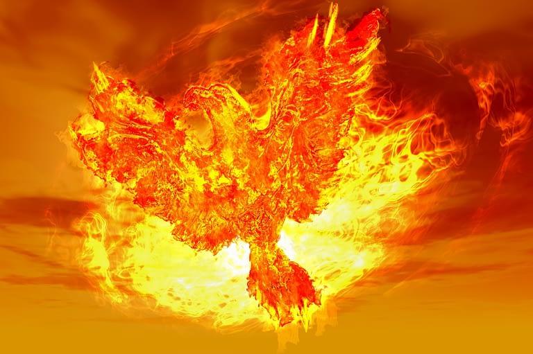 Phoenix Rising B 01
